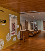 "Gallery view of ""Picture This! Navajo Pictorial Textiles"""
