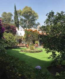 Garden at la Casa Azul during the Circles trip to Mexico City. Photo by John Bulla.